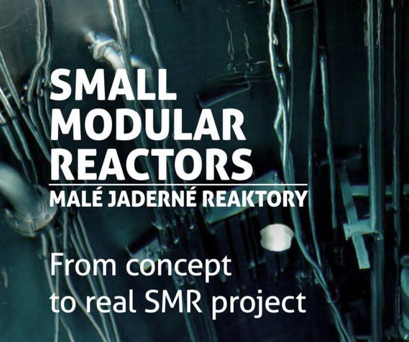 SMR 2020 Conference